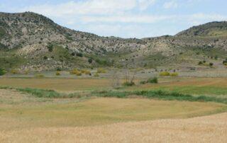 Campo, naturaleza, montaña