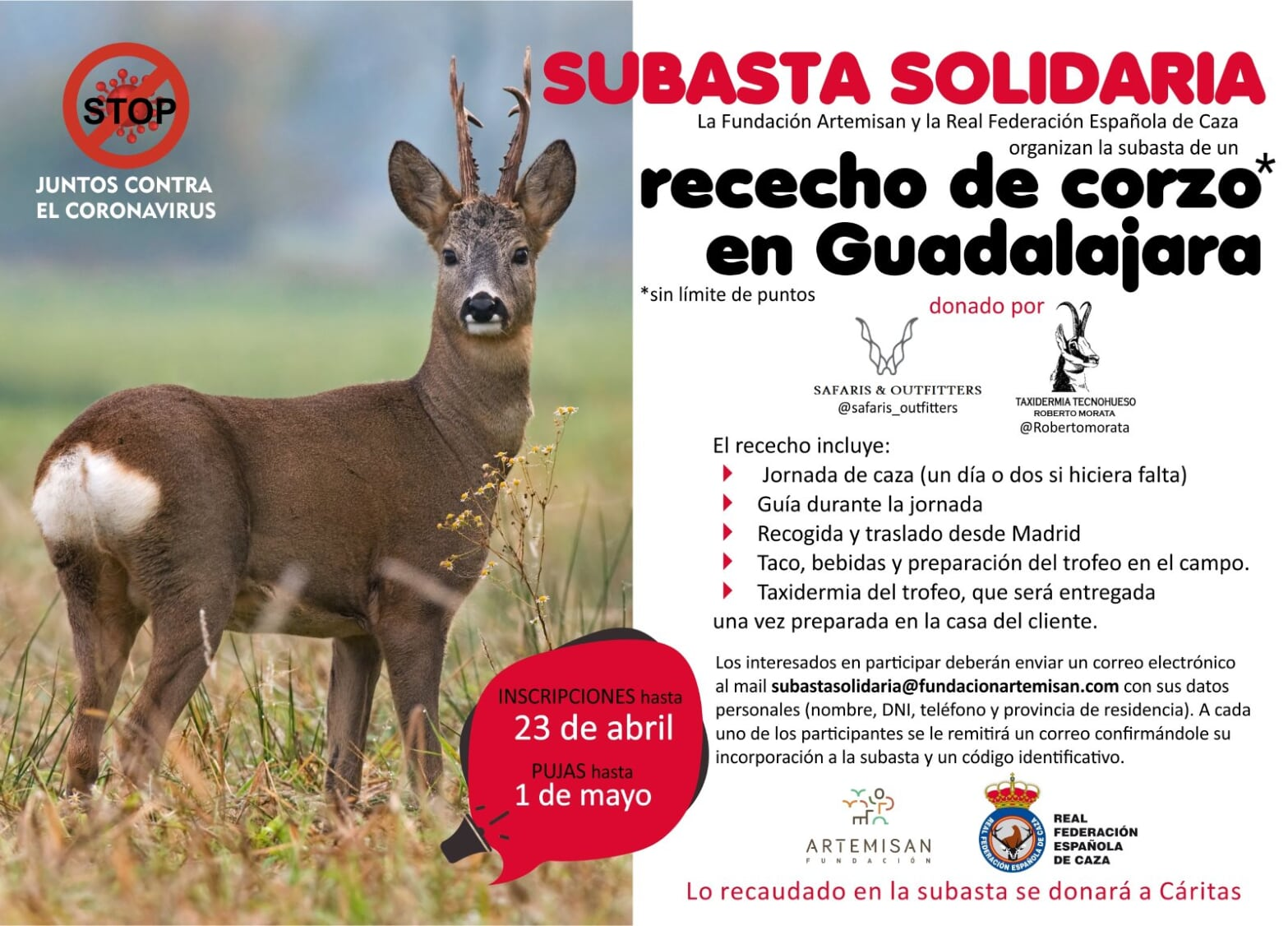 Cartel de la subasta solidaria de un rececho de corzo en Guadalajara contra el covid