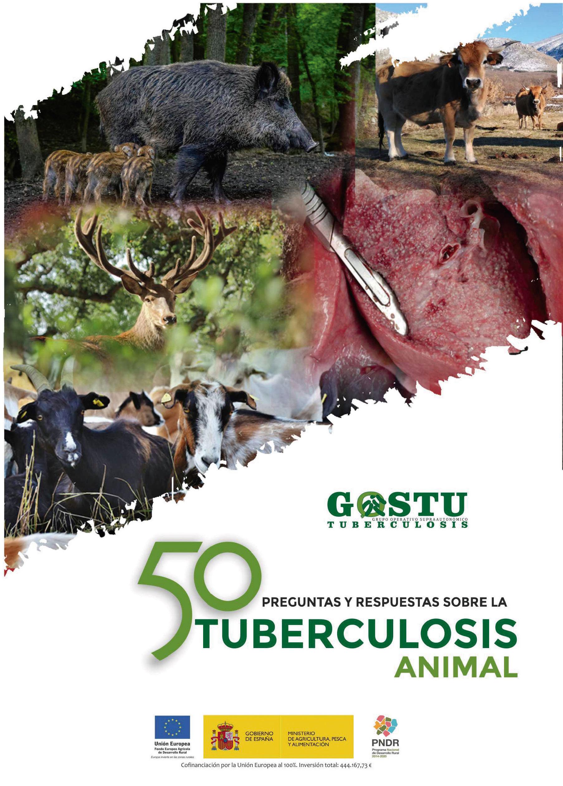 portada libro 50 preguntas tuberculosis gostu